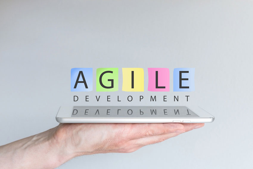 Agile projects & project management standards
